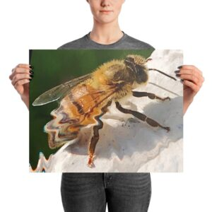 """""""The Drone"""" Photo paper poster"""